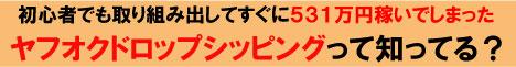 新ヤフオクドロップシッピング■初心者パッケージ■             ヤフオクを少し変わった使い方をしたら531万円も稼げたノウハウ■