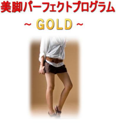 美脚パーフェクトプログラム〜GOLD〜