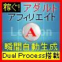 """アダルトアフィリエイトサイト自動生成プログラムVer.5~『Lexicon-A』~""""Dual Process"""" 搭載"""