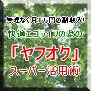 無理せず月3万円の副収入!快適エコライフの為の「ヤフオク」スーパー活用術!