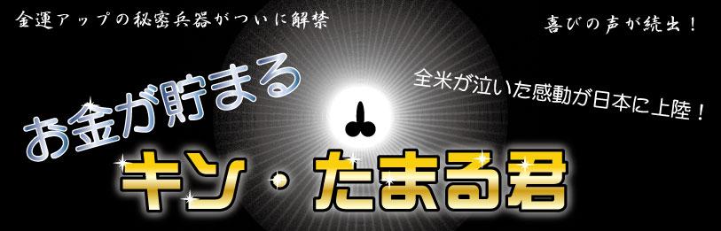 キン・たまる君ストラップ(11個セット)