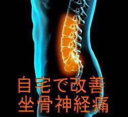 痛みとの決別~坐骨神経痛を自宅で改善