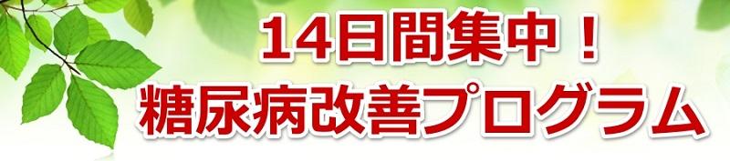 14日間集中!糖尿病改善プログラム