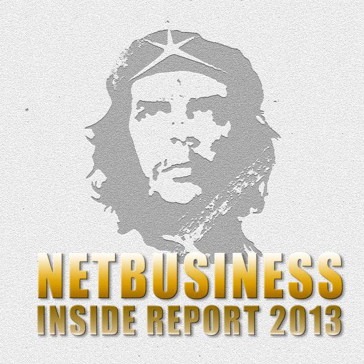 ネットビジネス・インサイドレポート 2013 著・松田春人