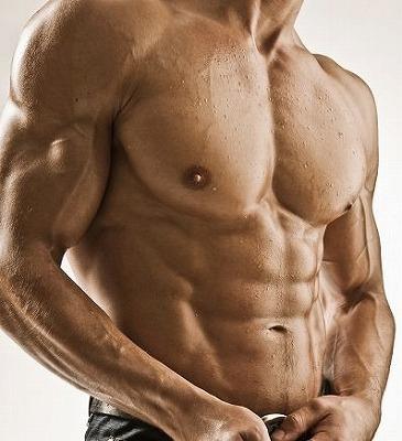 3週間 筋肉BODY 変身講座
