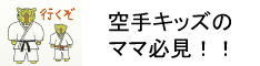 格闘技素人だった私がフルコンタクト空手を習う我が子を、約2年で全日本3位まで育て挙げた子供のサポート術や道場ではあまり教えてくれない組手試合で勝つコツなど教えます