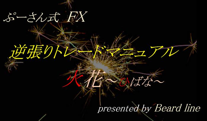 ぷーさん式FX 逆張りトレードマニュアル