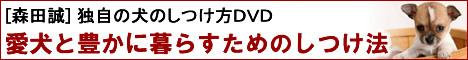犬のしつけで本当に大事な事とは?NHKで紹介された二村有香さん式しつけ法