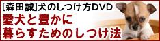 森田誠の犬のしつけマニュアルを購入するなら口コミを確認しょう!