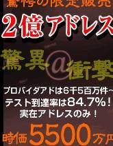 ★2億アドレス+業務用配信システム....