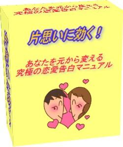 片思いに効く!究極の恋愛告白マニュアル(サポートあり版)