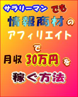 【再配布権付】サラリーマンでも情報商材のアフィリエイトで月収30万円を稼ぐ方法 3.0