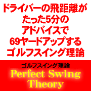 Perfect Swing Theory(パーフェクトスイングセオリー)