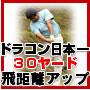 【ゴルフ】ドラコン日本一山田勉の30ヤード飛距離アッププログラムの画像