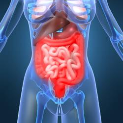 大腸がん克服大辞典