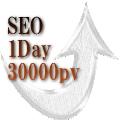 アクセス数が1日30000pv超えたSEO対策