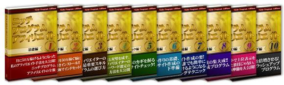 【販売停止中】ニッチプログラムアフィリエイト(NPA)