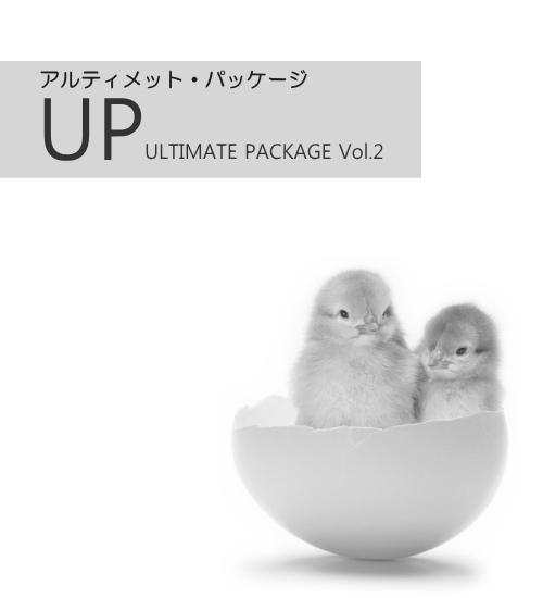 アルテミス【アルティメットパッケージ2】  :再販用HP・商材・ステップメール・無料レポート 稼ぐしくみすべてをご提供の画像