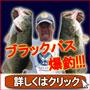 必釣!ブラックバス釣り名人、泊浩司のバスフィッシング攻略DVD講座