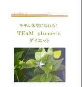 モデル体型になれる!TEAM Plumeria ダイエット DVD