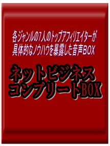 ネットビジネスコンプリートBOX