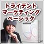 【ベーシック版】トライデントマーケティング