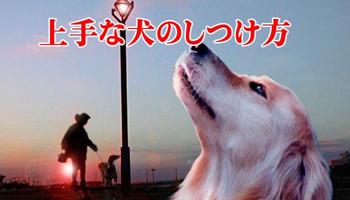 「上手な犬のしつけ方」