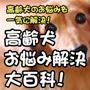 高齢犬お悩み解決大百科!