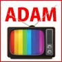 動画アフィリエイトブログメーカーの決定版 山本寛太朗の『ADAM』 100