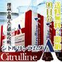 [送料無料 割引3箱セット]【シトルリン・アルギニン高配合】シトルリンラムダ 3箱セット[男性用ナイトサプリ]