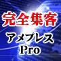 インターネット総合集客ツール アメプレスPro