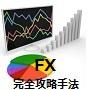 FX 完全攻略手法