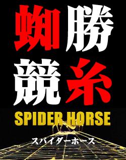 SPIDER HORSE【競馬予想ソフト終身ライセンスWINDOWS版】