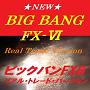 ◆ビックバンFX-6◆FX・外国為替証拠金取引◆