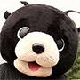 「Shou Time」 動画・音声コンテンツ作成テンプレート