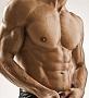 筋トレ3週間筋肉BODY変身講座