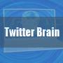 ツイッターブレイン(Twitter Brain)