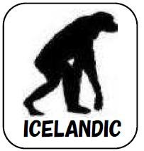 アイスランド語 サバイバル・フレーズブック Survival ICELANDIC  語学の道は一日にして成らず・・・ だけど今すぐ必要だという皆様のための、ライフジャケットのような緊急性と利便性を備えた、アイスランド語会話集