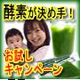 青汁は酵素が決め手!野菜の栄養と酵素が一緒に摂れる『青汁・プロ』 国産・農薬不使用でお子様にも安心です。
