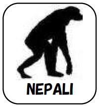 ネパール語 サバイバル・フレーズブック Survival NEPALI  語学の道は一日にして成らず・・・ だけど今すぐ必要だという皆様のための、ライフジャケットのような緊急性と利便性を備えた、ネパール語会話集