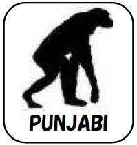 パンジャブ語 サバイバル・フレーズブック Survival PUNJABI  語学の道は一日にして成らず・・・ だけど今すぐ必要だという皆様のための、ライフジャケットのような緊急性と利便性を備えた、パンジャブ語会話集