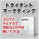 トライデントマーケティング【ブログとメルマガで月収422万円を稼いだ方法】