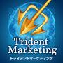 ●177日で月収422万3509円稼ぐ「トライデントマーケティング」