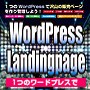 WordPress Landingpage