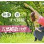 「五感解放ヨガ」動画+特典PDF(お家ヨガのポイント3) ヨガインストラクター 武田 明子