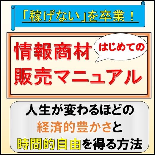 個人が在宅で100万円?!顧客が歓喜する情報販売ビジネス講座 (旧インフォトップ特別講義)