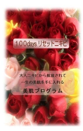 100daysリセットニキビ ~大人ニキビから解放されてすっぴん美人を目指す美肌プログラム~