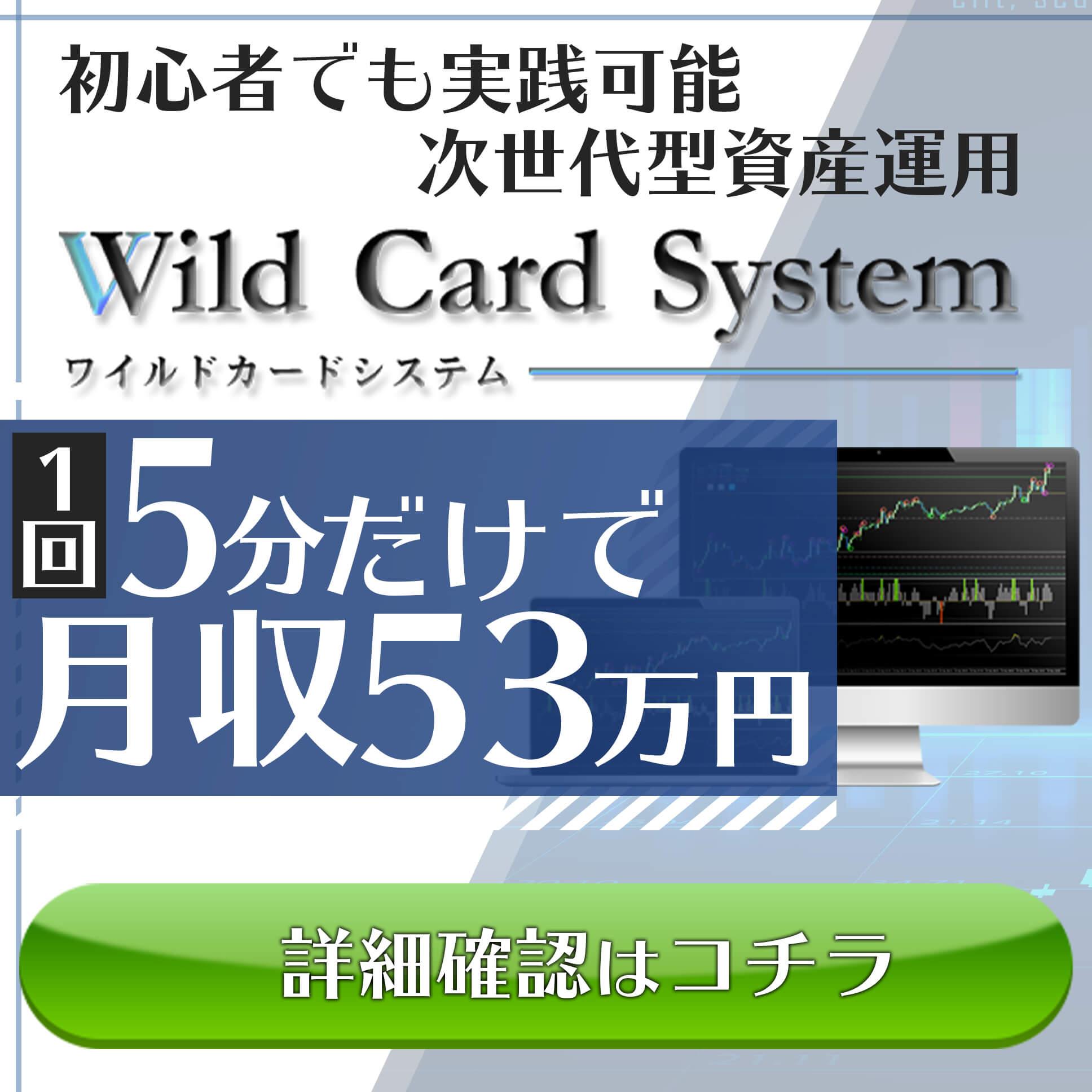 WildCardSystem(ワイルドカードシステム)のレビュー